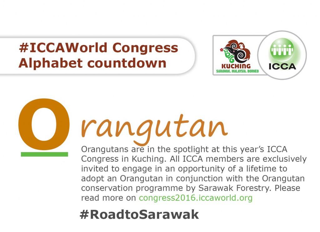 roadtosarawak.jpg_large